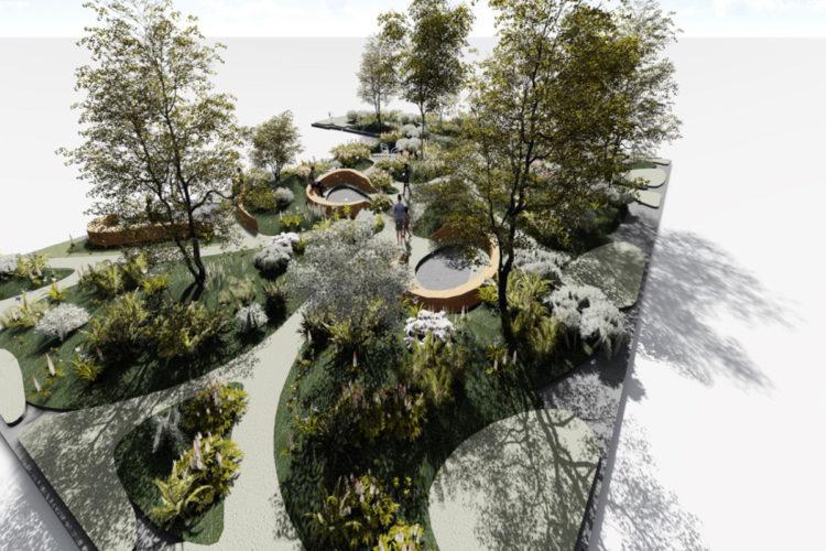 conception toiture végétale