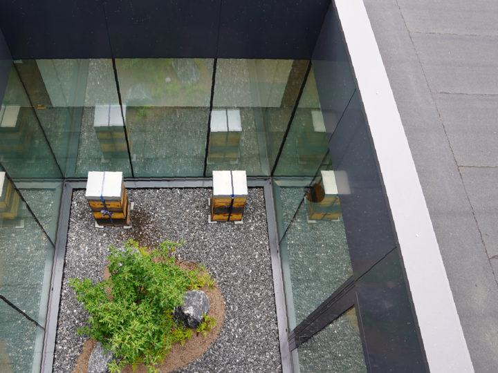 ibic patio met bijenkasten