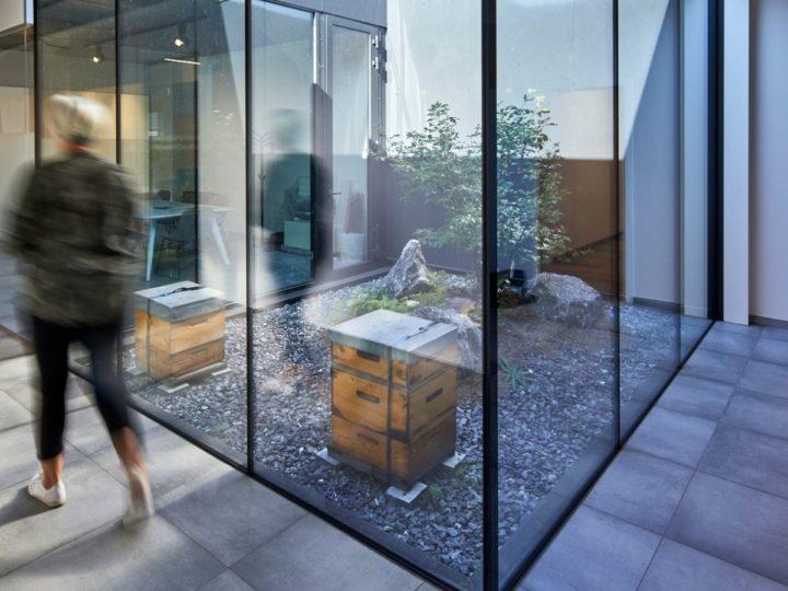 ibic gebouw gang met uitzicht op patio met bijenkasten