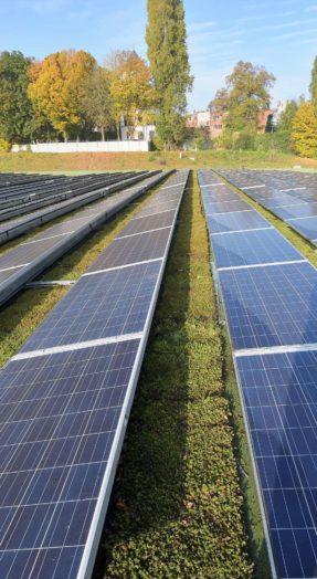 Toiture végétale plus durable : équipez-la de panneaux solaires !