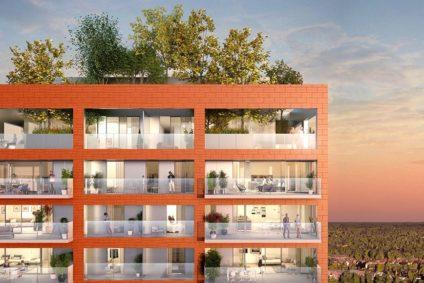 bomen op dak van De Nieuwe Dokken Gent
