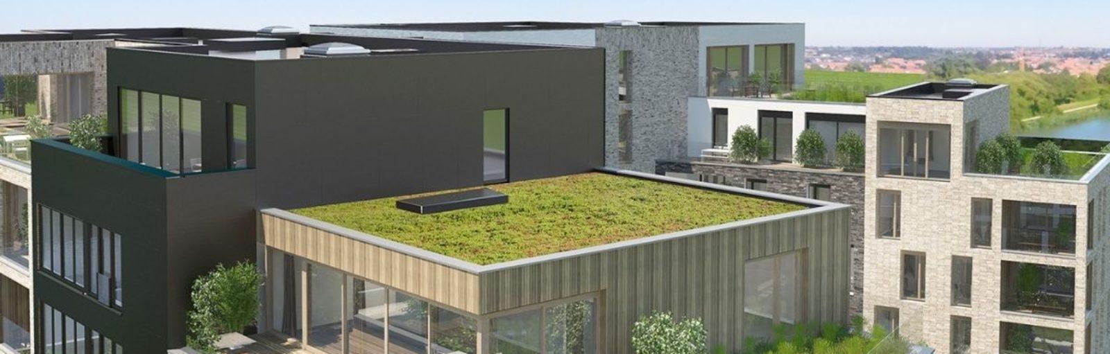 groendaken woonproject dac'art